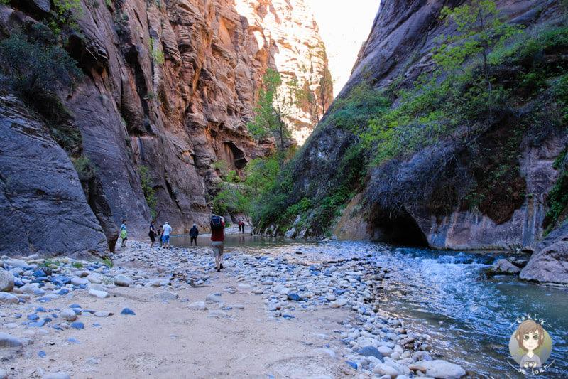 Riverside Walk im Zion National Park