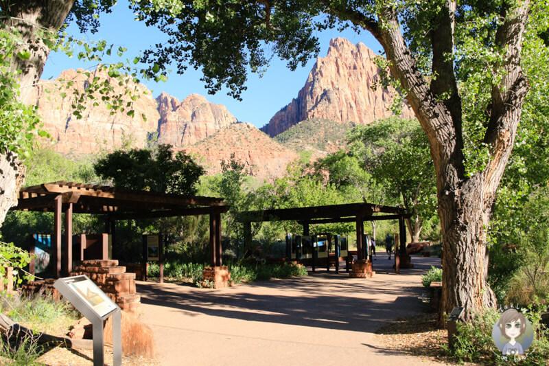 Zion National Park (4)