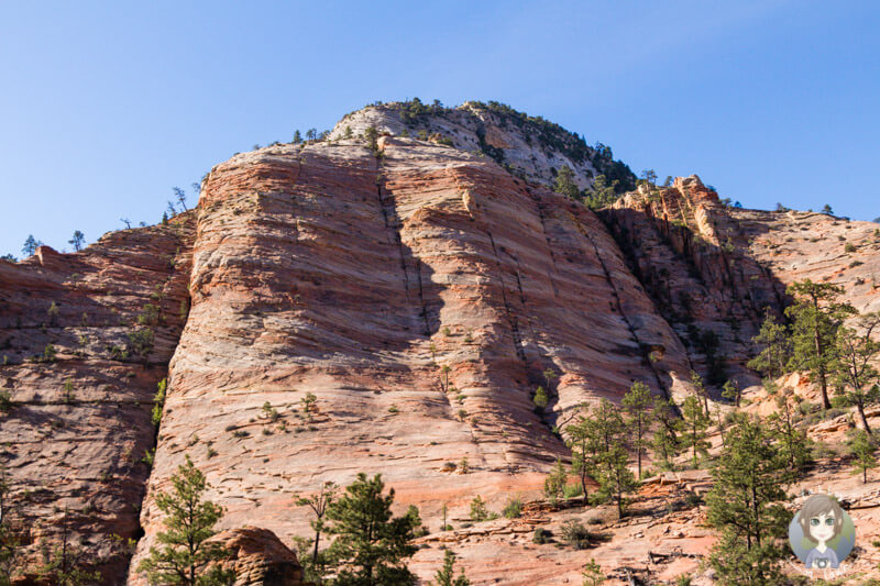 Zion Nationalpark (3)