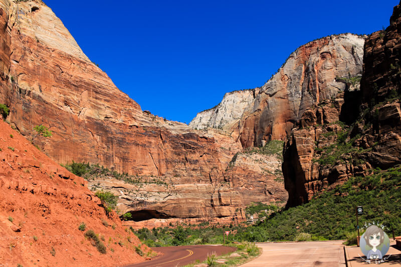 Zion Nationalpark (4)