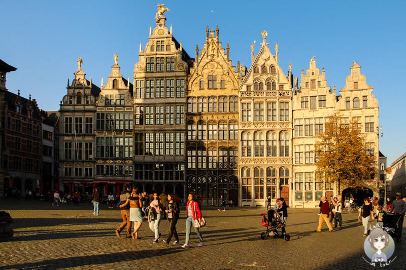 Am Nachmittag vor den Zunfthäusern auf dem Grote Markt von Antwerpen