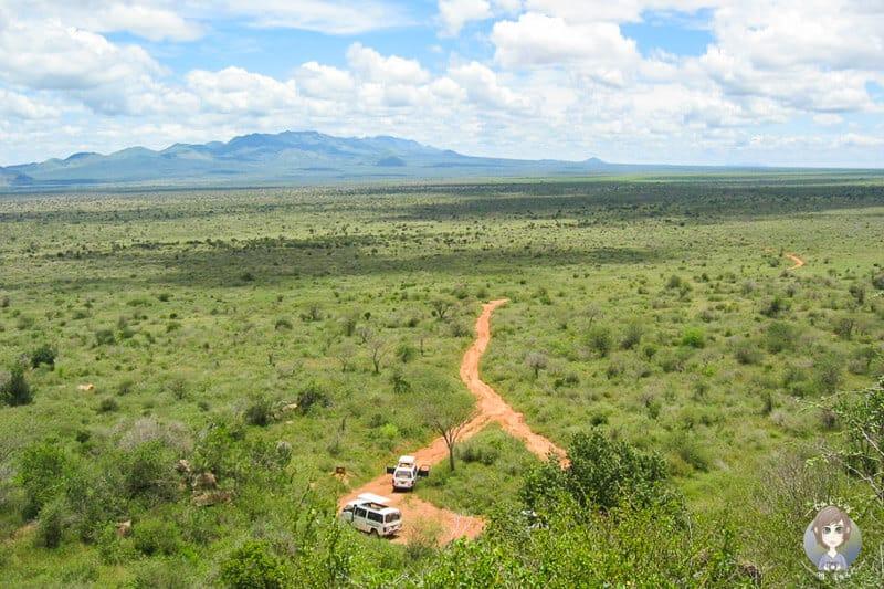 Fantastischer Abschluss unserer Kenia Safari
