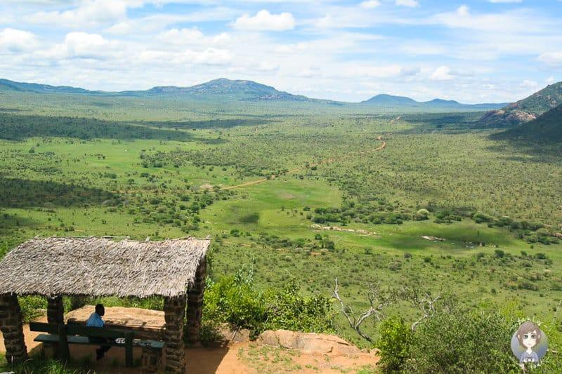 Gigantischer Ausblick auf die Savanne im Tsavo Nationalpark