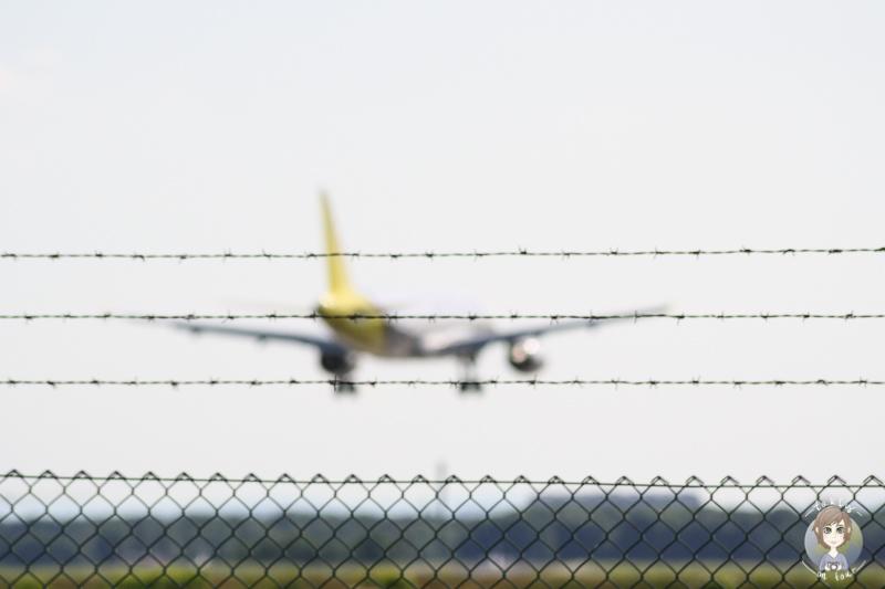 Flugzeug beobachten Koeln
