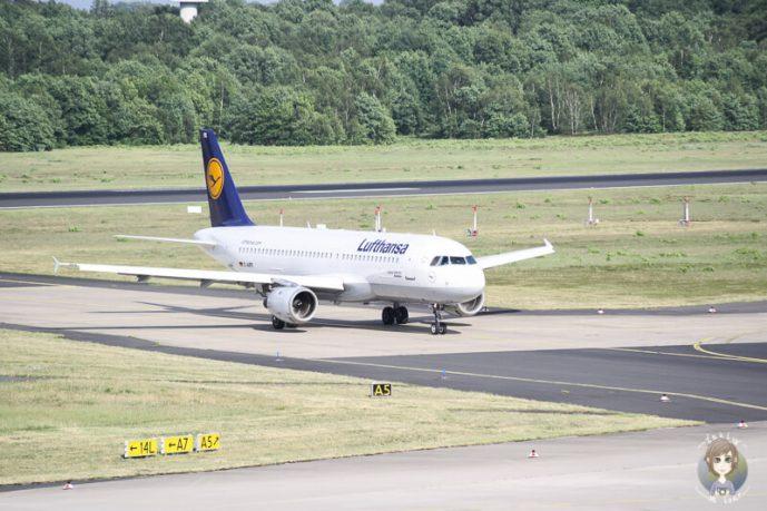 Plane Spotting Koeln Bonn Flughafen