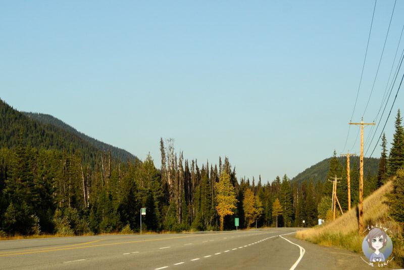 Früh am Morgen im Manning Provincial Park, Canada
