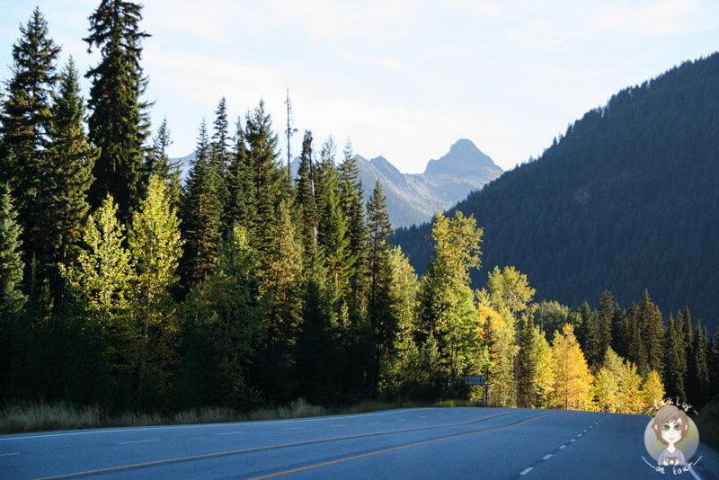 Der Fahrt durch den Manning Provincial Park am Abend