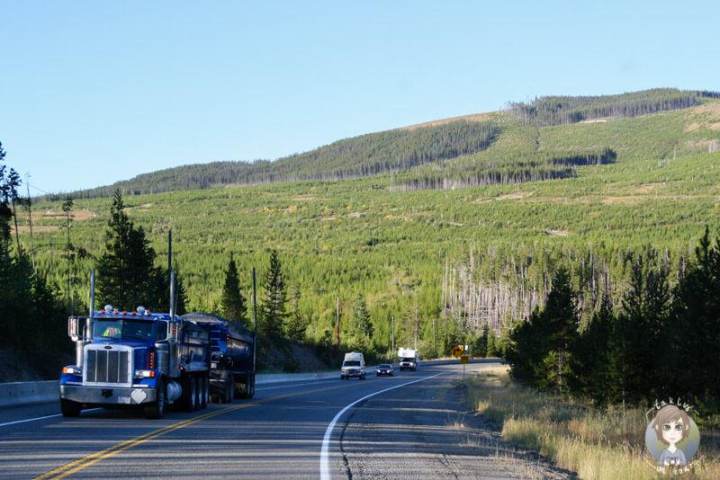 Früh am Morgen im Manning Provincial Park