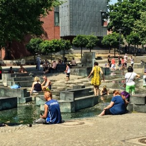 Wasserlandschaft in Köln