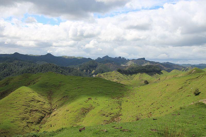 Die typische Landschaft der Nordinsel von Neuseeland waehrend unserer Fahrt mit dem Camper in Neuseeland