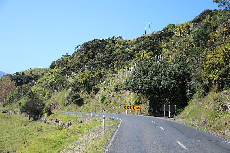 Natur pur waehrend unserer Fahrt mit dem Camper in Neuseeland