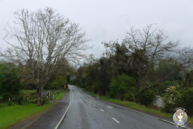 Regen südlich von Motueka