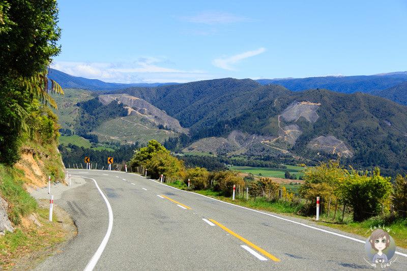 Fahrt über den Takaka Hill Highway in Neuseeland