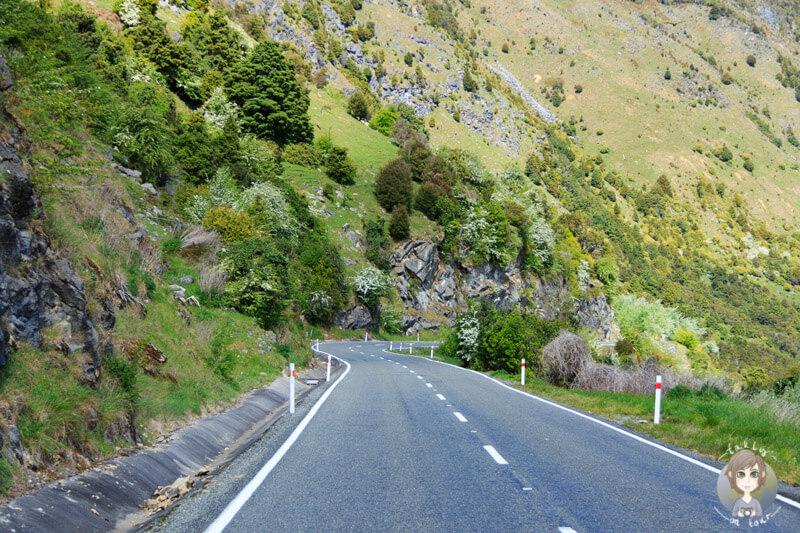 Fahrt durch den Abel Tasman National Park