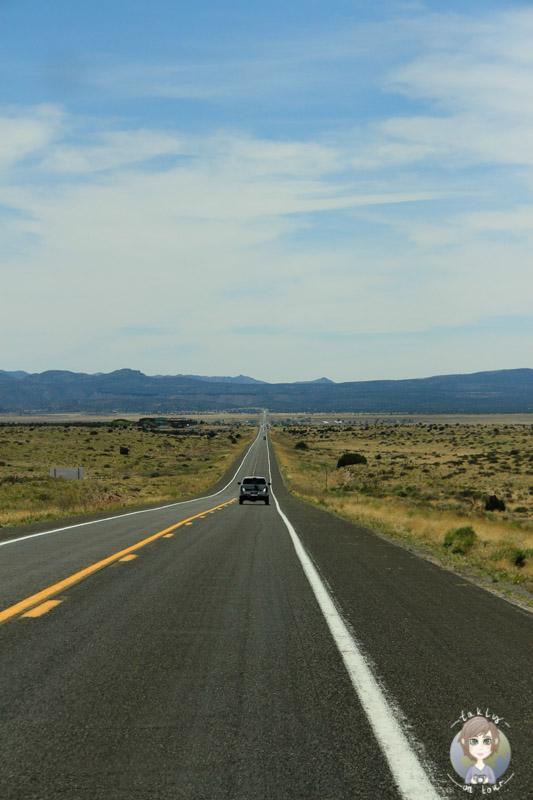 Anschließend ging unsere Fahrt über ein Stück der Route66.