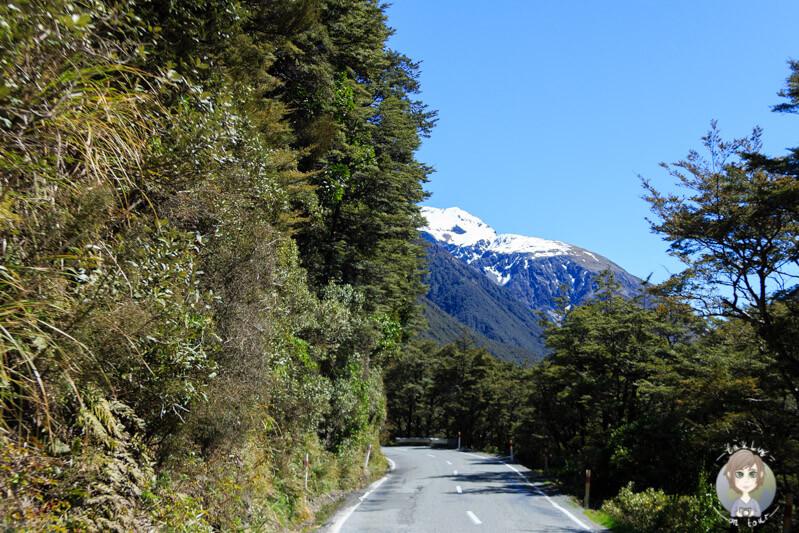Fahrt über den Arthur's Pass
