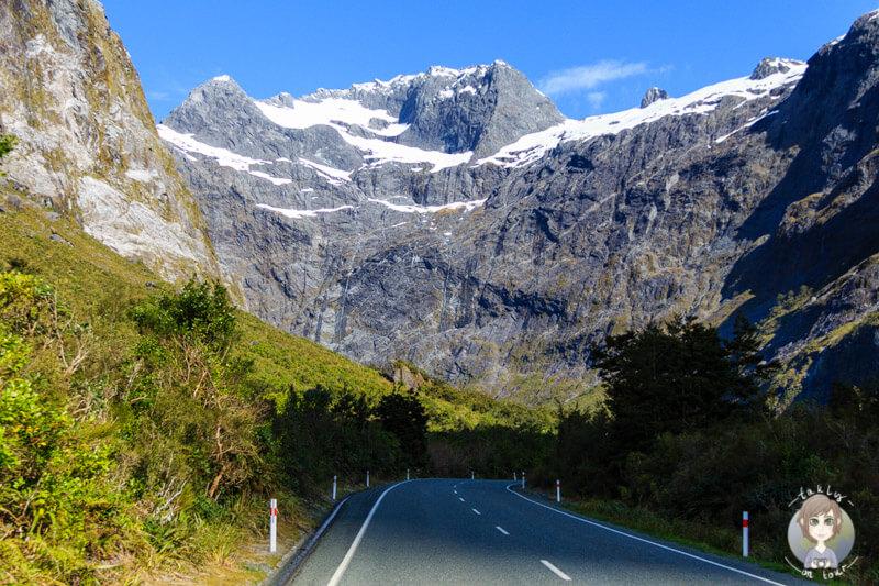 Bergwelt im Fiordland Nationalpark (1)