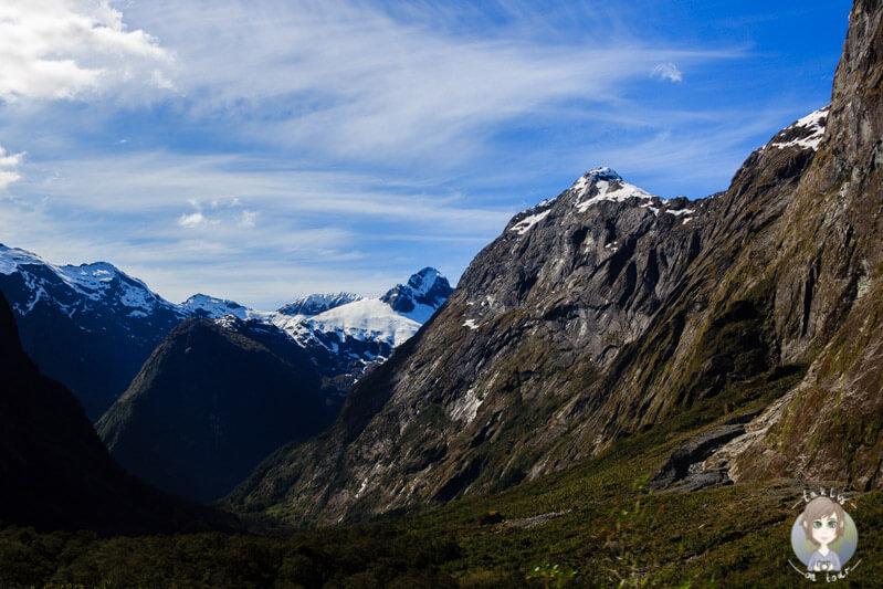Bergwelt im Fiordland Nationalpark (2)