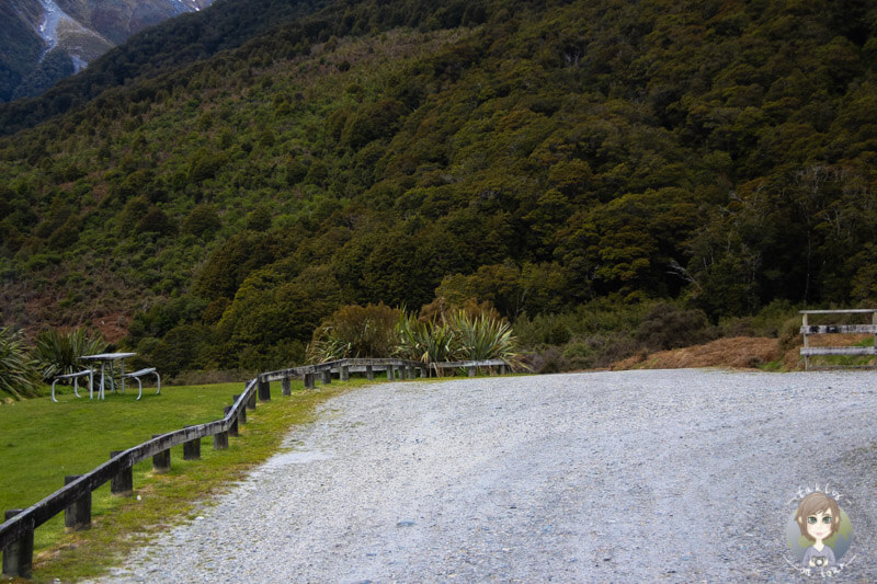 Cameron Flat DOC, Haas Pass, Neuseeland (9)
