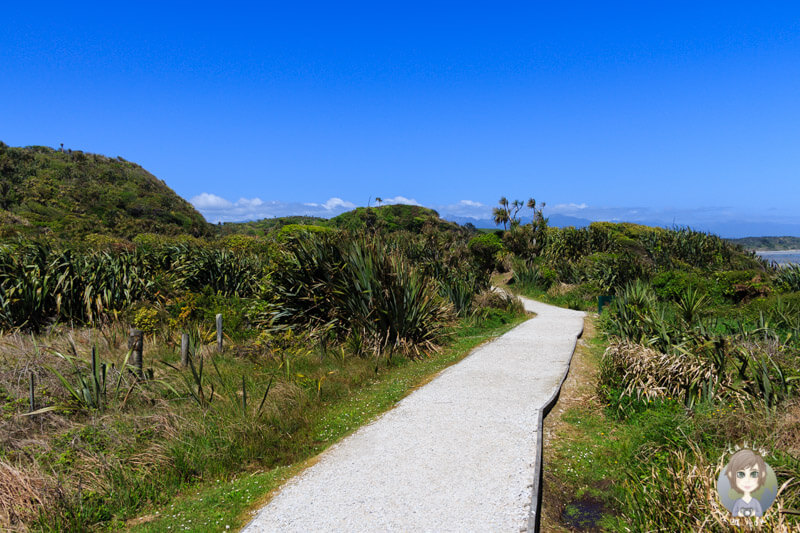 Wanderweg am Cape Foulwind