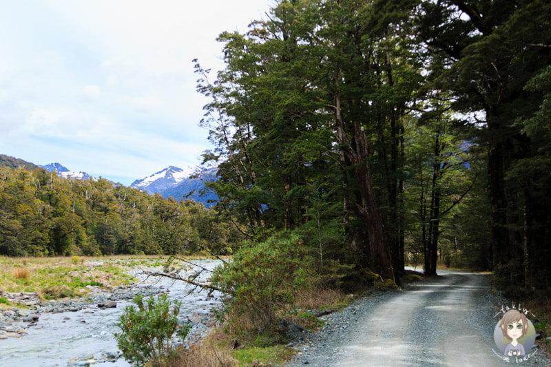 Cascade Creek Campingplatz, Fiordland Nationalpark (2)