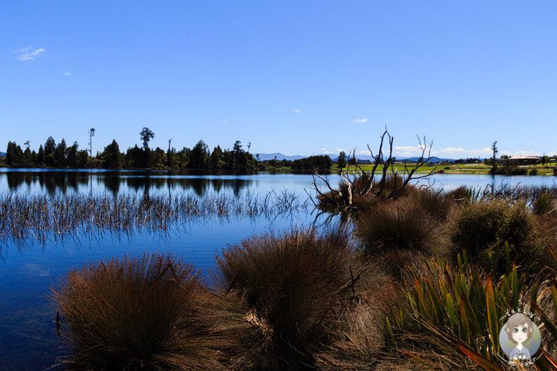 Cashmere Bay, West Coast, NZ (2)
