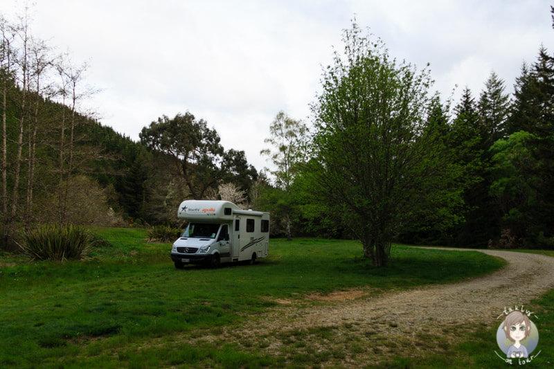 Clark Valley, Neuseeland (3)