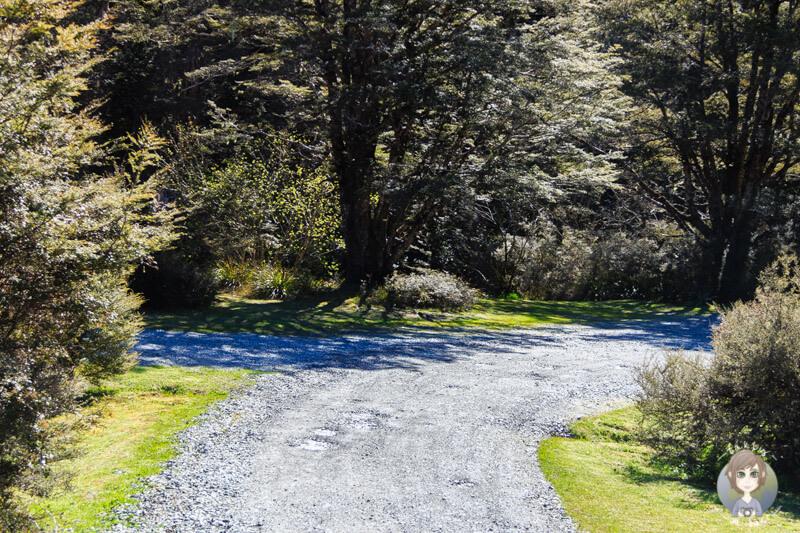Deer Valley Campsite, Neuseeland (2)