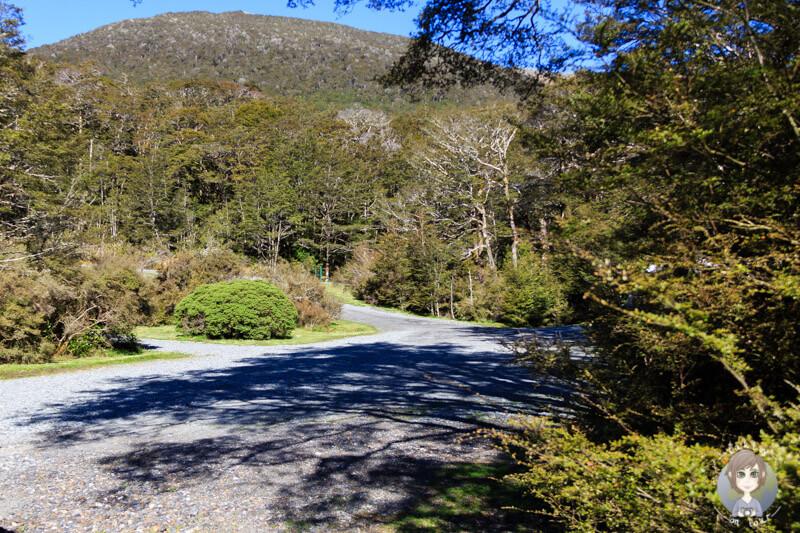 Deer Valley DOC Campsite, Neuseeland (3)