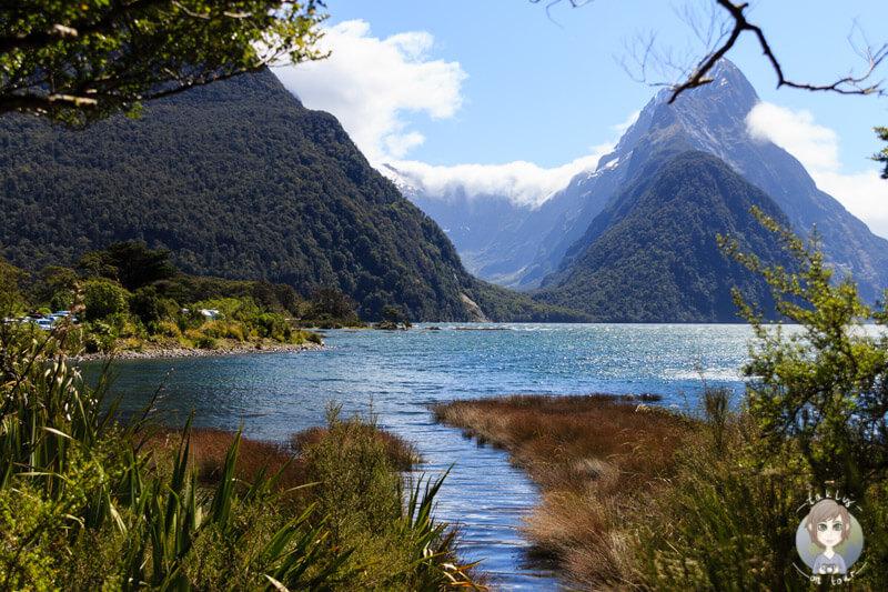Der wunderschöne Milford Sound, Southland, Neuseeland