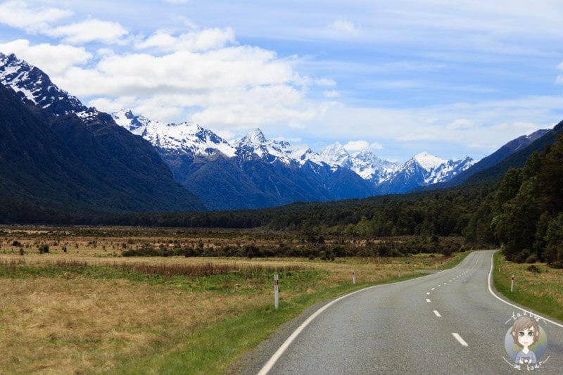 Eglinton Valley, Fiordland Nationalpark (3)