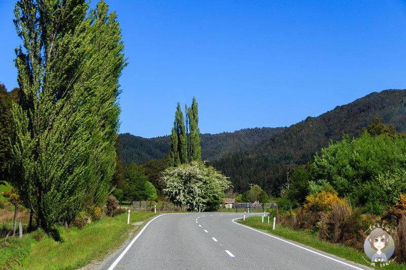 Unsere Fahrt über den Lewis Pass, Neuseeland Westcoast