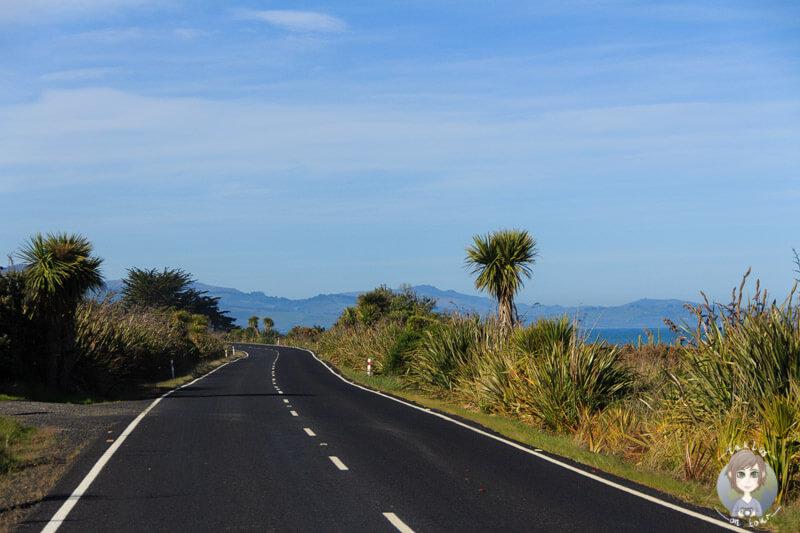 Fahrt Richtung Brighton in Otago