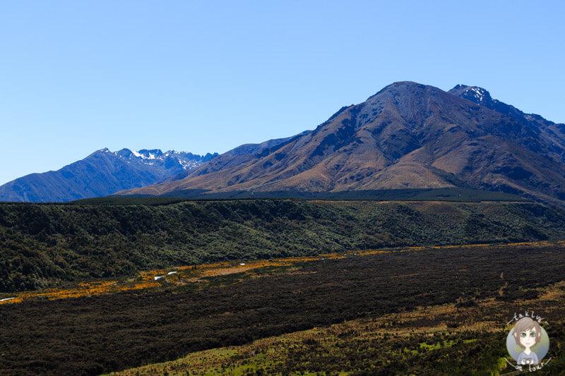 tolle Aussicht auf ein Valley in Neuseeland