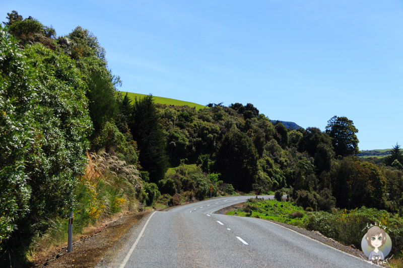 Fahrt zu den Purakaunui Falls