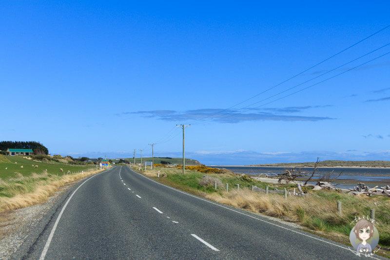 Fahrt Richtung Catlins, NZ