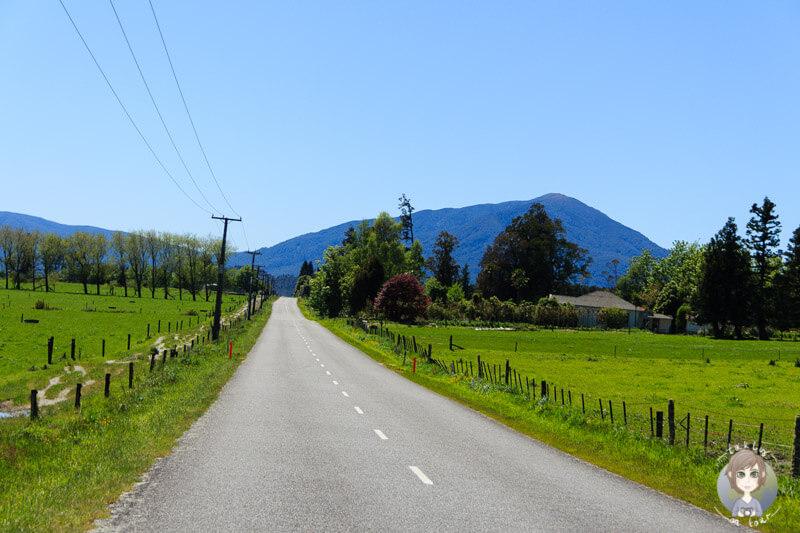Der Lake Brunner Tourist Drive auf dem Weg nach Te Kinga und Moana