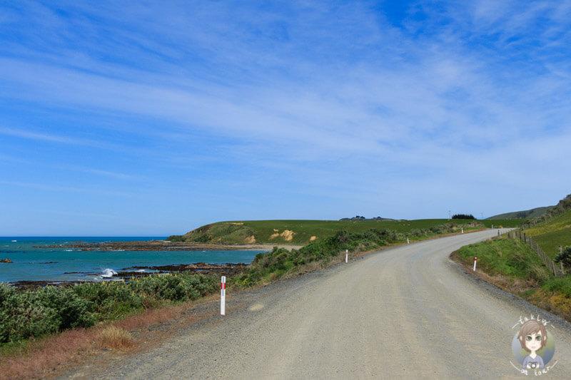 Fahrt zum Nugget Point, Otago (1)