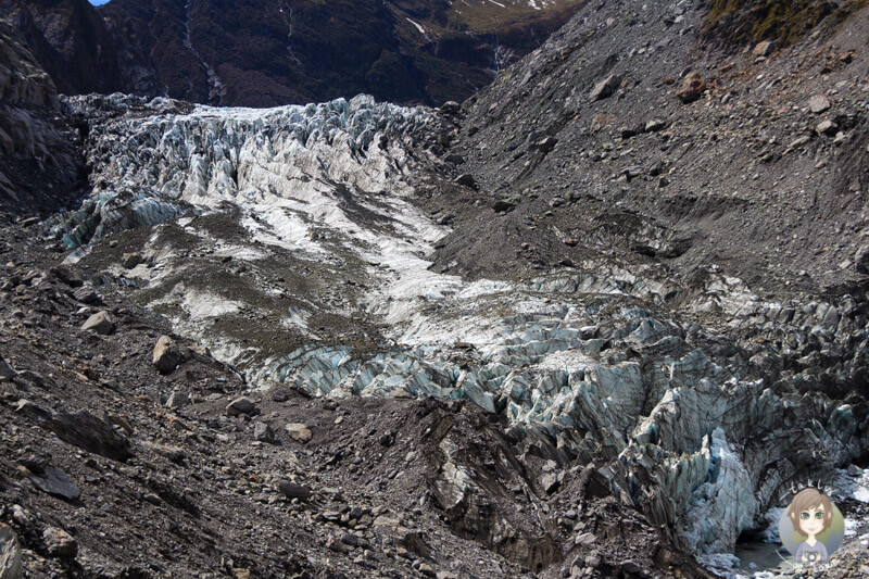 Fox Glacier, West Coast Neuseeland (2)