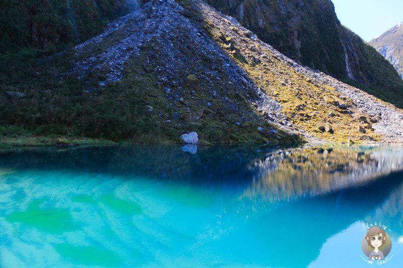 Fox Gletscher in Neuseeland (3)