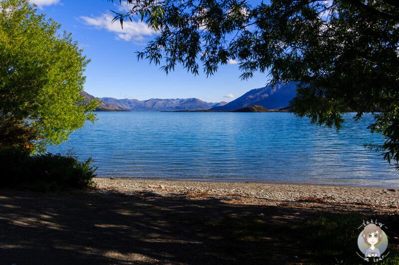 Freedom Camping am Lake Wakatipu (3)