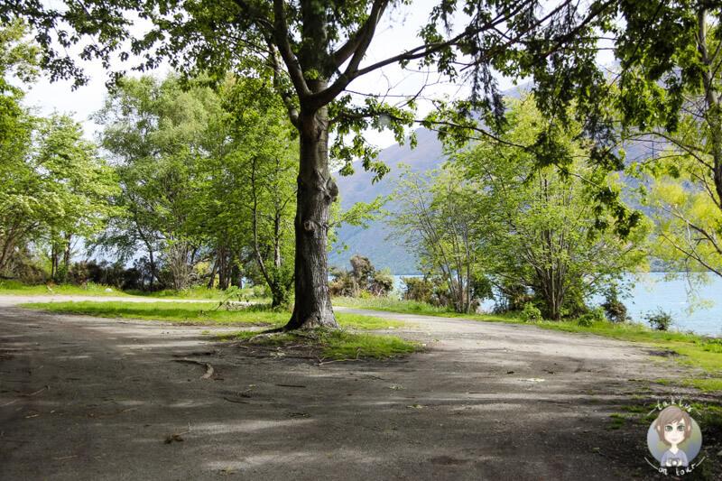 Freedom Camping am Lake Wakatipu, Nahe Kingston