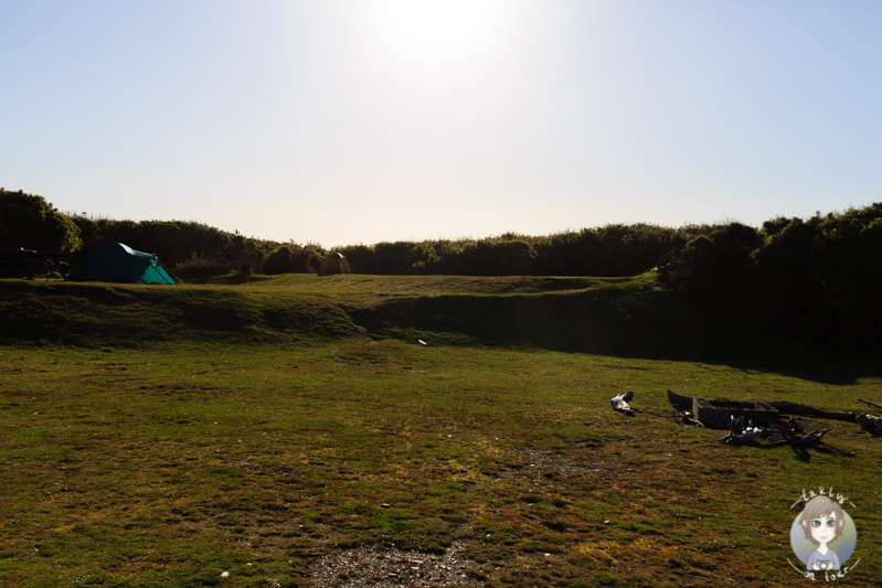Gillespies Beach DOC Camping (5)