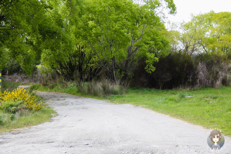 Glenorchy Freedom Camping (2)