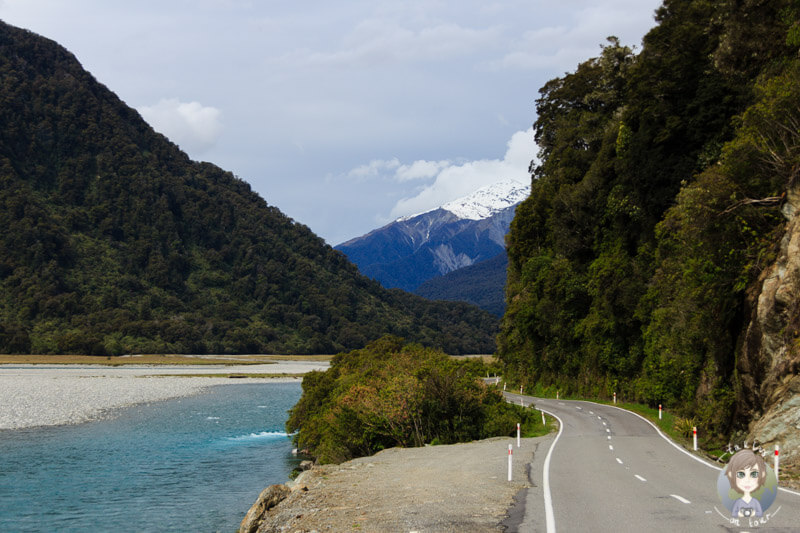 Haast Highway, West Coast (4)