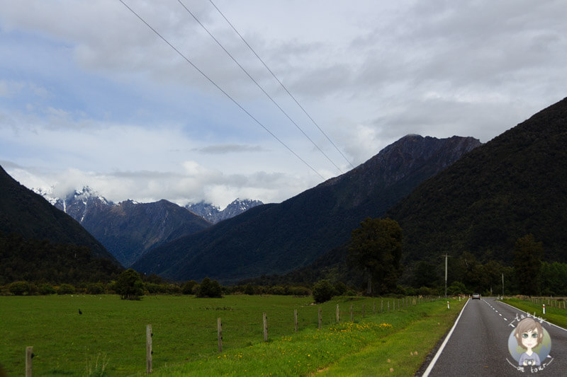 tolle Natur am Haast Pass