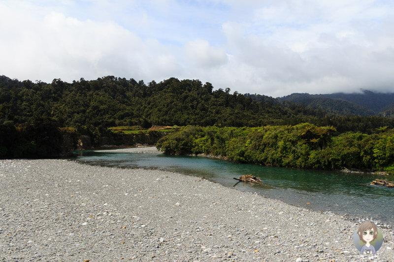Harihari Highway, Neuseeland (1)