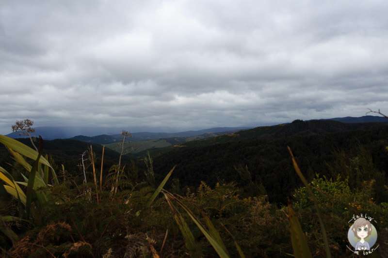 Hope Saddle Lookout (1)