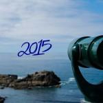 Jahresrückblick 2015