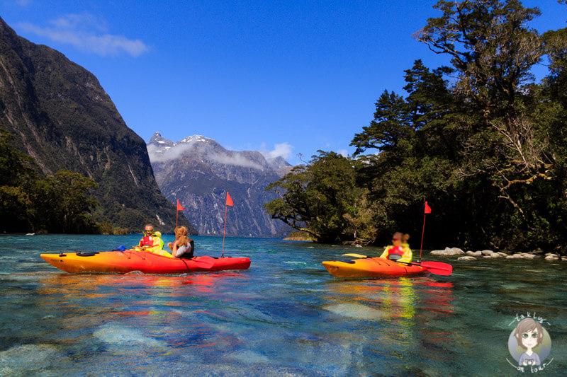 eine Kayaktour in der Harrisons Cove auf dem Milford Sound